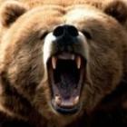 9oo28小熊